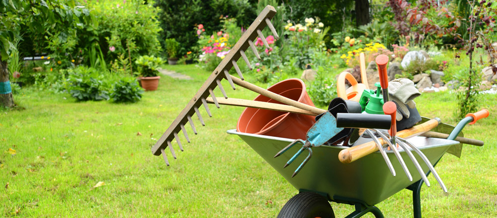 Garden services newbury reliable gardener in hungerford for Lawn and garden services